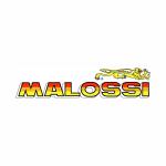 malossi ischia